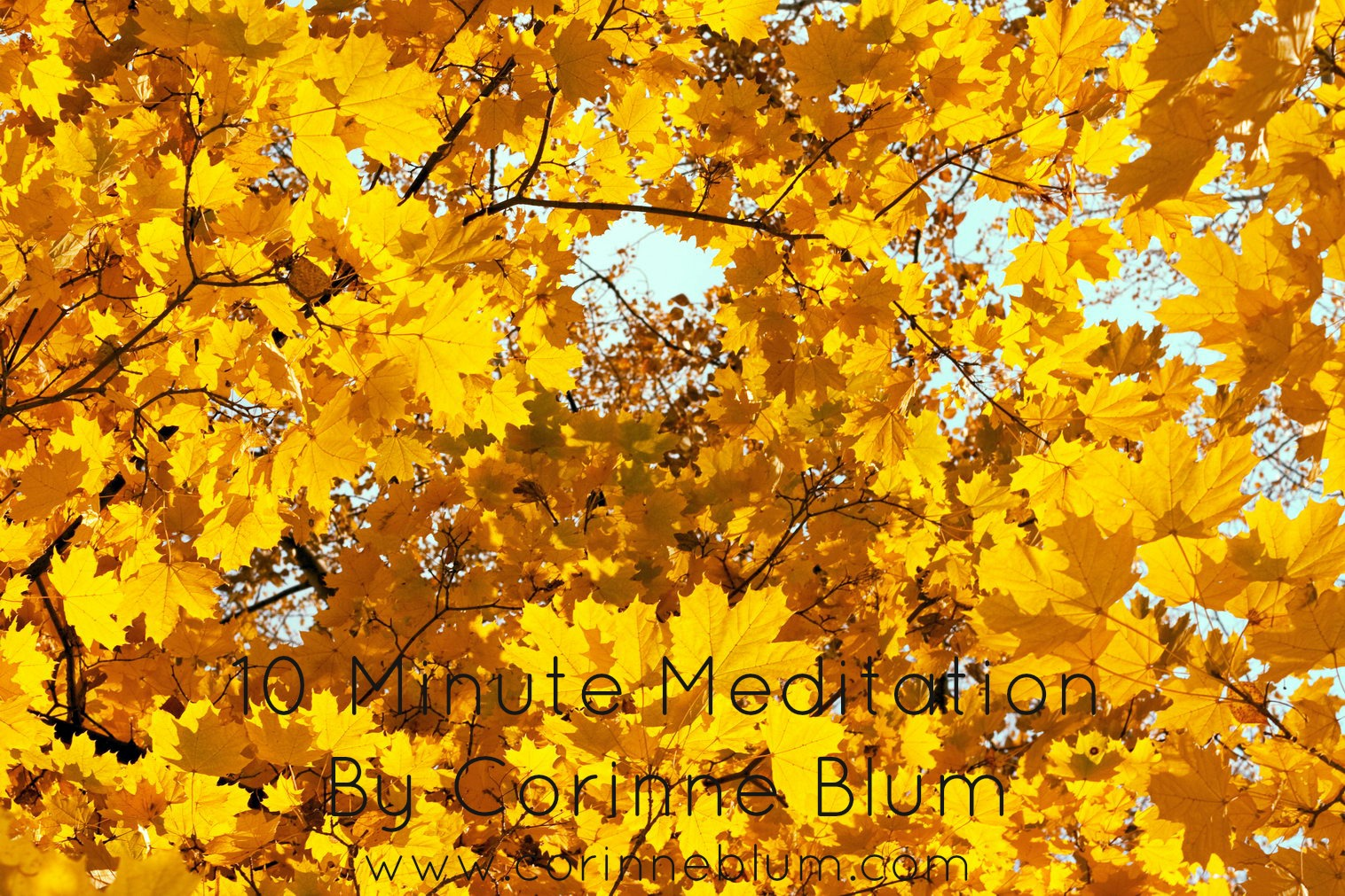10 Minute Guided Meditation by Corinne Blum