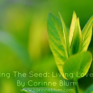 Planting The Seed-Living Love Now_Corinne Blum.jpg