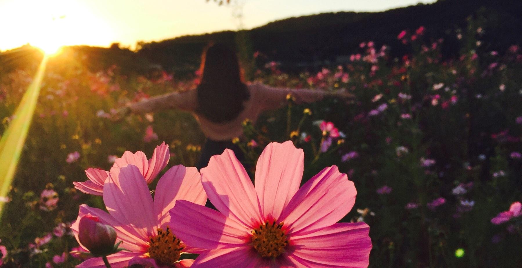 women flower fieldjpg